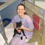 Rebeccah Vaughan, CVT, VTS (Anesthesia) (Clinical Practice- canine/feline)
